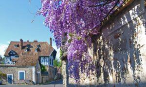 L Instant Fleury Faites-le plein de découvertes historiques et naturelles...